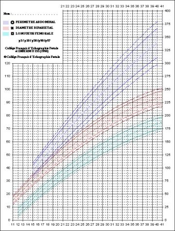 mesures en échographie, courbe du CFEF